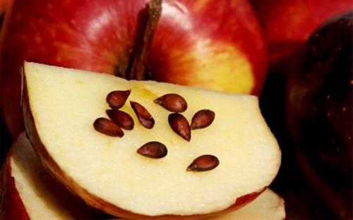 Косточки красного яблока